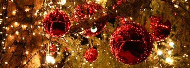 Kerstdiner op ALO! D, E, F en Kalfjes